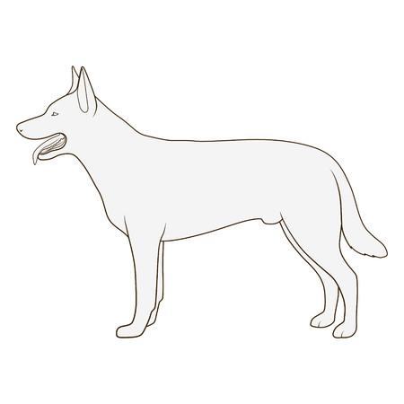 billet: Dog side view scheme silhouette medical veterinary science educational vector illustration