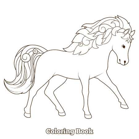 kinky: Wild horse coloring book educational game vector illustration Illustration