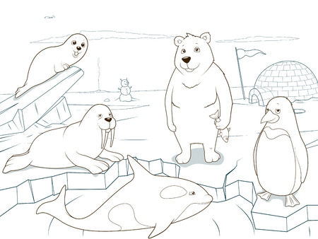 Arctic animals coloring book educational game for kids vector illustration, educational game, animals