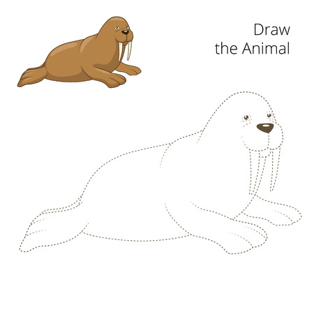 draw animal: Learn to draw animal walrus colorful funny hand drawn vector illustration