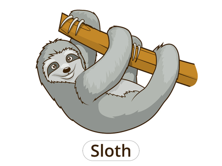 arboreal: Sloth cartoon funny colorful hand drawn vector illustration