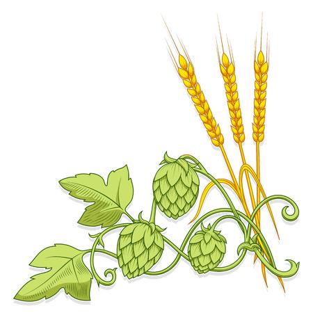 Elegante ramo hop mano illustrazione vettoriale disegnato