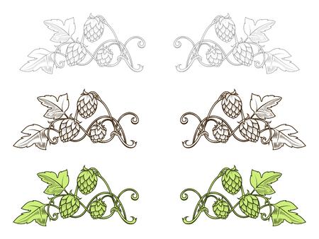 Stilvolle Hopfenzweig Hand gezeichnet Vektor-Illustration Illustration