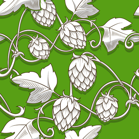 Stylish hop branch hand drawn vector illustration