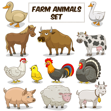 animal farm duck: Cartoon funny farm animals colorful set vector illustration