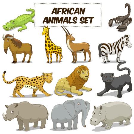 hipopotamo cartoon: Animales de la historieta sabana africana divertidos conjunto de colores ilustración vectorial