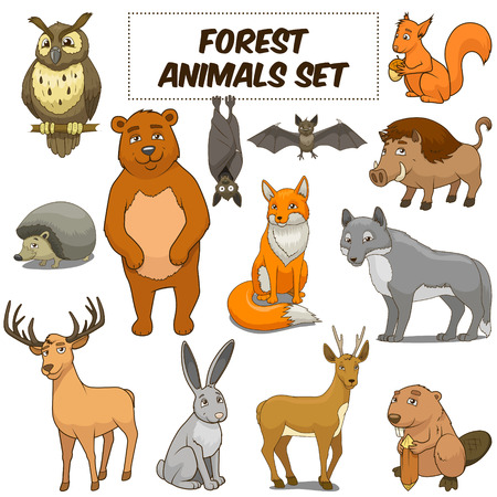 bat animal: Cartoon funny forest animals colorful set vector illustration