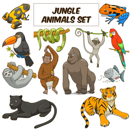 zwierzeta: Cartoon śmieszne zwierzęta dżungli zestaw kolorowych ilustracji wektorowych Ilustracja