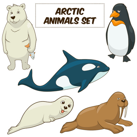Cartoon funny arctic animals colorful set vector illustration