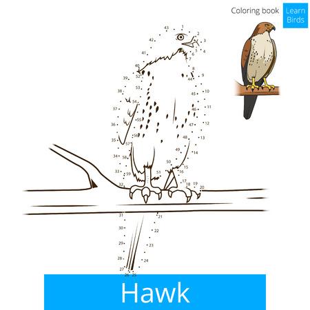 game bird: Hawk bird learn birds educational game coloring book vector illustration