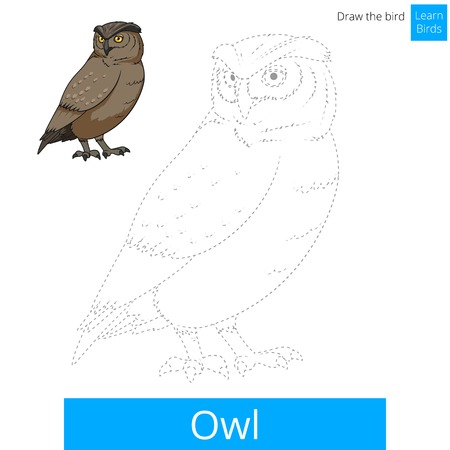 owl vector: Owl learn birds educational game learn to draw vector illustration Illustration