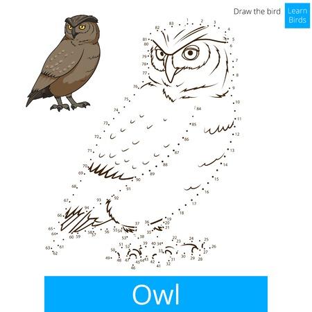 mosca caricatura: Owl aprender las aves juego educativo aprender a dibujar ilustraci�n vectorial