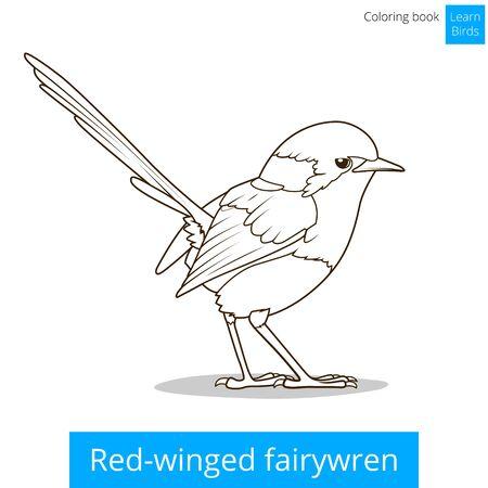 game bird: Red winged fairywren bird learn birds educational game coloring book vector illustration Illustration