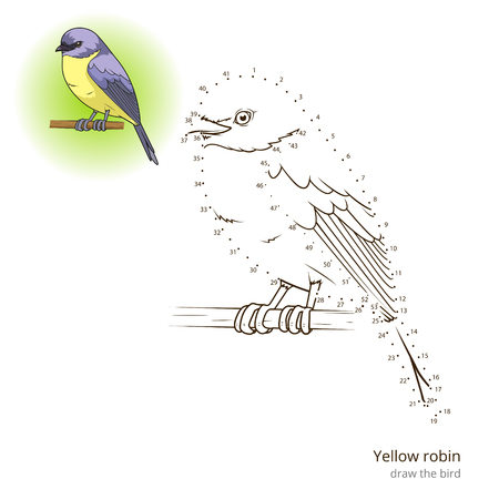 Yellow Robin Learn Birds Educational Game To Draw Vector Illustration