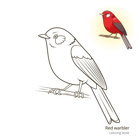 dyeing: Red warbler bird learn birds educational game coloring book vector illustration