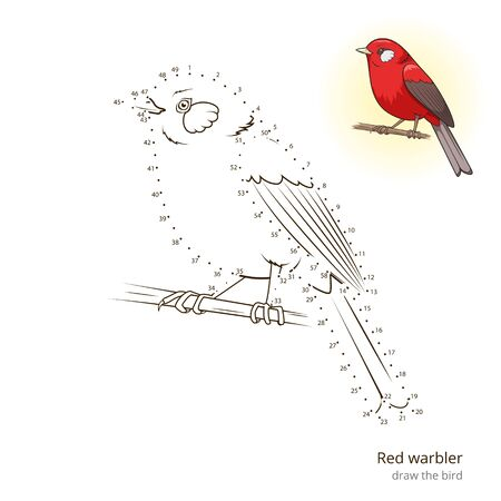 warbler: Red warbler learn birds educational game learn to draw vector illustration Illustration