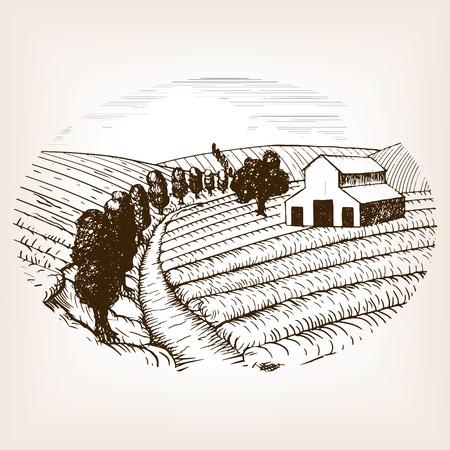 rough draft: Farm landscape sketch style vector illustration. Old engraving imitation. Hand drawn sketch imitation. Country Landscape Illustration