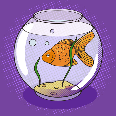 fish tank: Goldfish in fishbowl pop art style vector. Comic book style imitation. Vintage retro style. Conceptual illustration