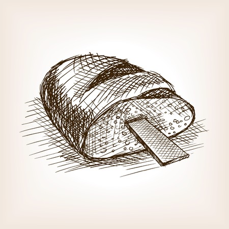 rasp: Rasp in bread sketch style vector illustration. Old engraving imitation. Rasp in bread hand drawn sketch imitation