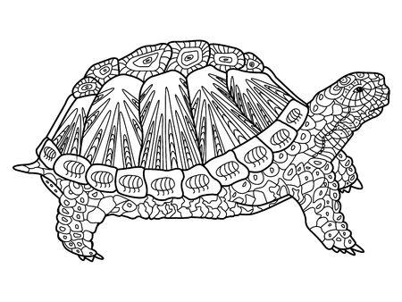 turtles: Turtle coloring book for adults illustration. Anti-stress coloring for adult. style. Black and white lines. Lace pattern Illustration