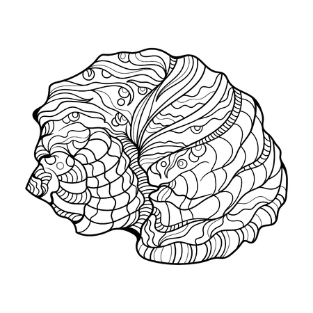 helix: Shell helix coloring book for adults vector illustration.