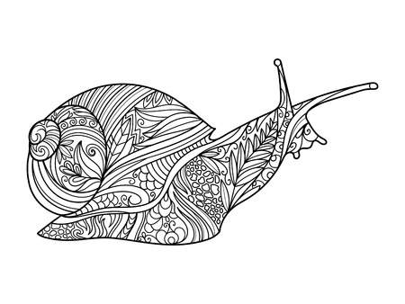 Snail coloring book for adults vector illustration.