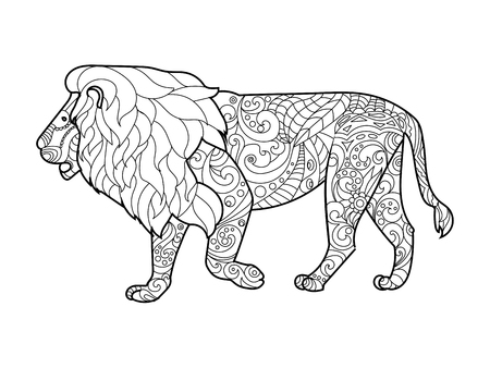 adults: Lion coloring book for adults vector illustration.