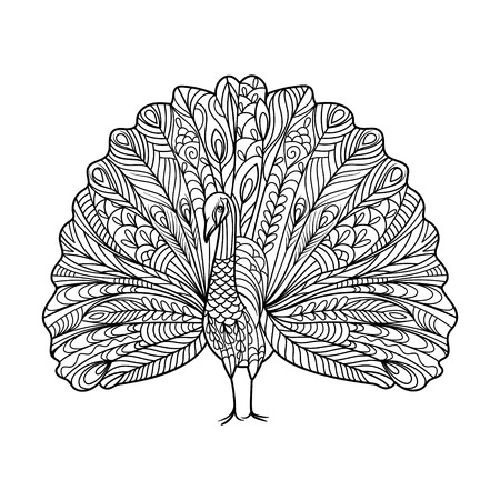 peacock pattern: Peacock bird coloring book for adults illustration. Anti-stress coloring for adult. style. Black and white lines. Lace pattern Illustration