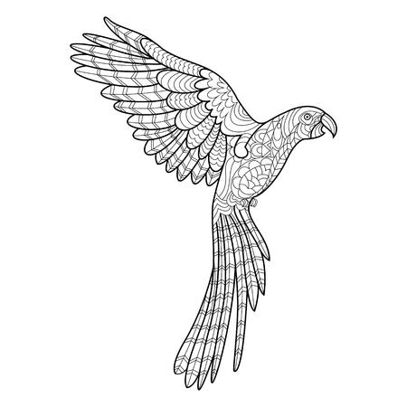 Loro guacamayo de libro para colorear de aves para la ilustración vectorial adultos. Antiestrés colorear para adultos. estilo de Zentangle. líneas blancas y negras. modelo del cordón
