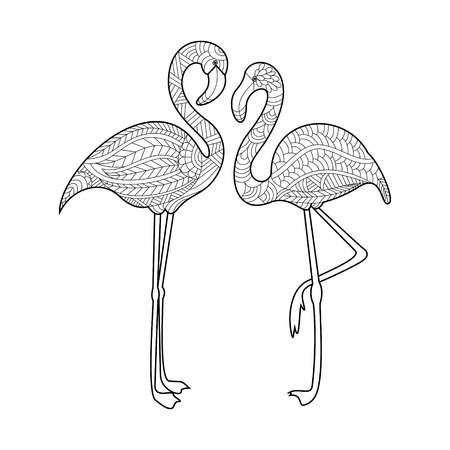 Flamingo bird coloring book for adults vector illustration.