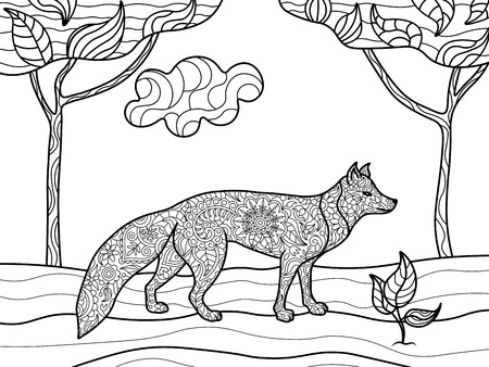 foxes: Fox animal coloring book for adults vector illustration.