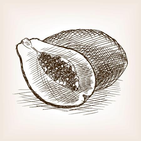 Papaya sketch style vector illustration. Old engraving imitation. Beans hand drawn sketch imitation