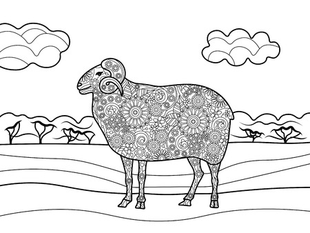 Sheep coloring book for adults vector illustration.
