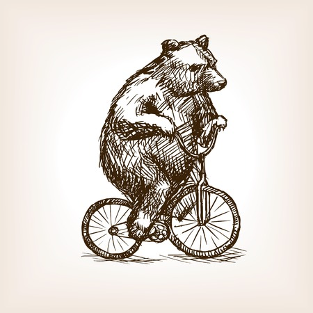 rough draft: Circus bear on bicycle sketch style vector illustration. Old engraving imitation.