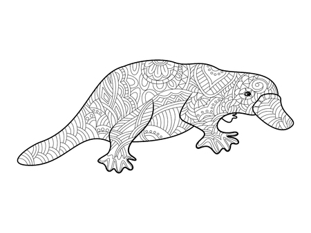 platypus: Platypus coloring book for adults vector illustration.