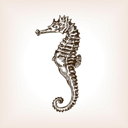 Zeepaardje schets stijl vector illustratie. Oude gravure imitatie.