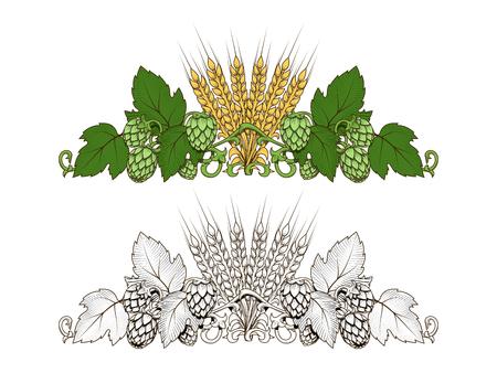 ramo hop elegante e orzo disegnata a mano illustrazione vettoriale Vettoriali