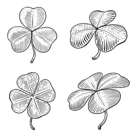 scratch board: Clover leaf engraving style illustration. Scratch board style imitation Illustration