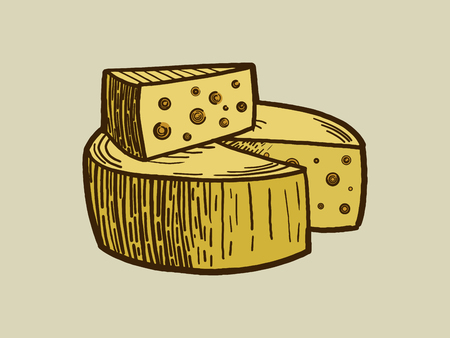 scratch board: Cheese engraving style vector illustration. Scratch board style imitation Illustration