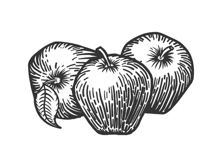 Apple-Gravur-Stil Vektor-Illustration. Scratch Board Stil Nachahmung Vektorgrafik