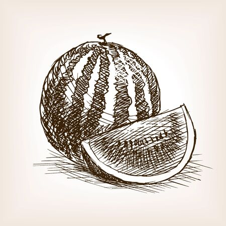 rough draft: Watermelon fruit sketch style vector illustration. Old engraving imitation.