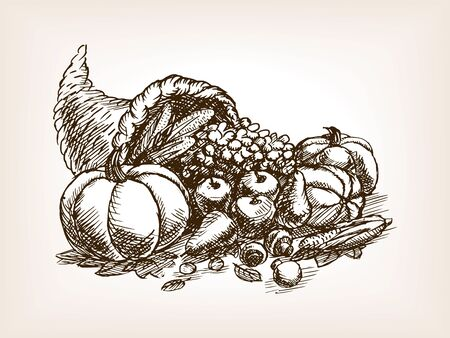 scratchboard: Vegetables harvest sketch style vector illustration. Thanksgiving Day still life. Old engraving imitation.