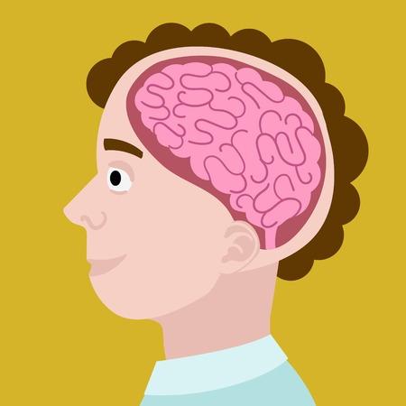 cabeza humana en la sección. cerebro de dibujos animados en la cabeza. La mano de colores dibujado dibujos animados ilustración vectorial
