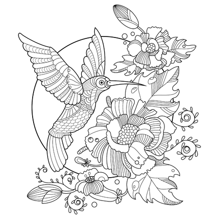 Hummingbird colibri coloring book for adults vector illustration. Anti-stress coloring for adult. Tattoo stencil. Zentangle style. Black and white lines. Lace pattern