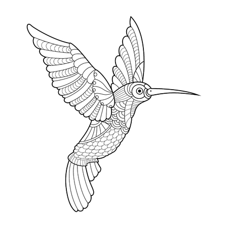 Hummingbird colibri coloring book for adults vector illustration. Anti-stress coloring for adult. Tattoo stencil.   Black and white lines. Lace pattern Illustration