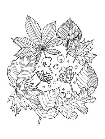 Hojas De Los árboles De Follaje Para Colorear La Ilustración De ...