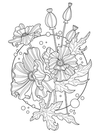 Poppy flowers coloring book vector illustration 向量圖像