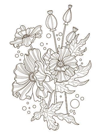 Flores De Amapola Para Colorear Ilustración Vectorial Ilustraciones ...