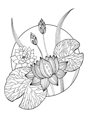 Lotus flower coloring book vector illustration tattoo stencil lotus flower coloring book vector illustration tattoo stencil black and white lines lace mightylinksfo