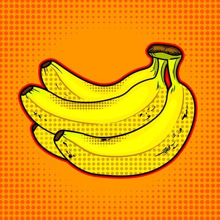 Bananas fruit vector illustration Illustration